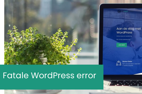 Hoe fatale fout repareren: maximale uitvoeringstijd overschreden in WordPress